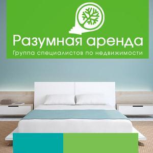 Аренда квартир и офисов Димитровграда