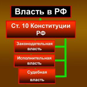 Органы власти Димитровграда