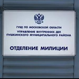 Отделения полиции Димитровграда