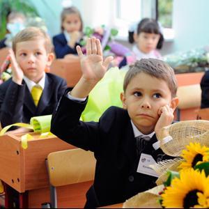 Школы Димитровграда